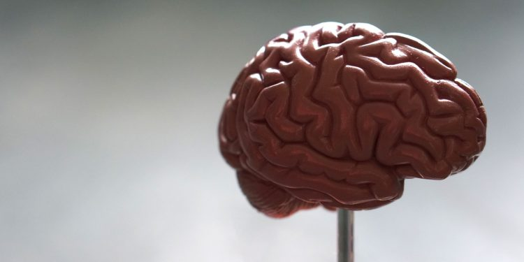 氫氣對於血管性失智的幫助